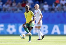 afrique du sud coupe du monde